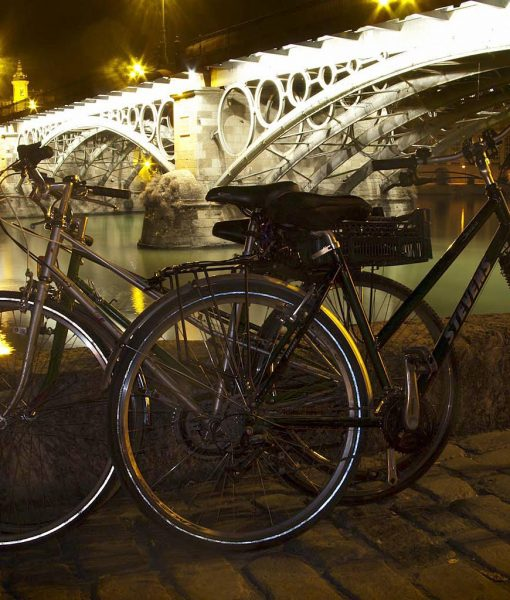 Private bike tour Seville