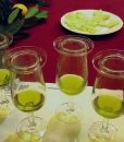 Olive Tasting on a Day Trip to Carmona from Seville