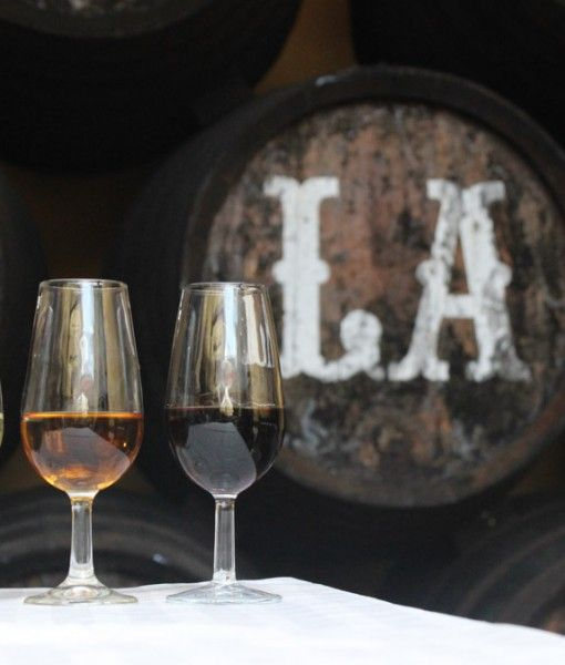 Sherry & Wine Tasting Day Tour from Seville