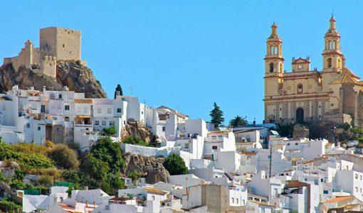 Private transfer to Malaga and Ronda