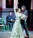 Tapas tour and flamenco show at night