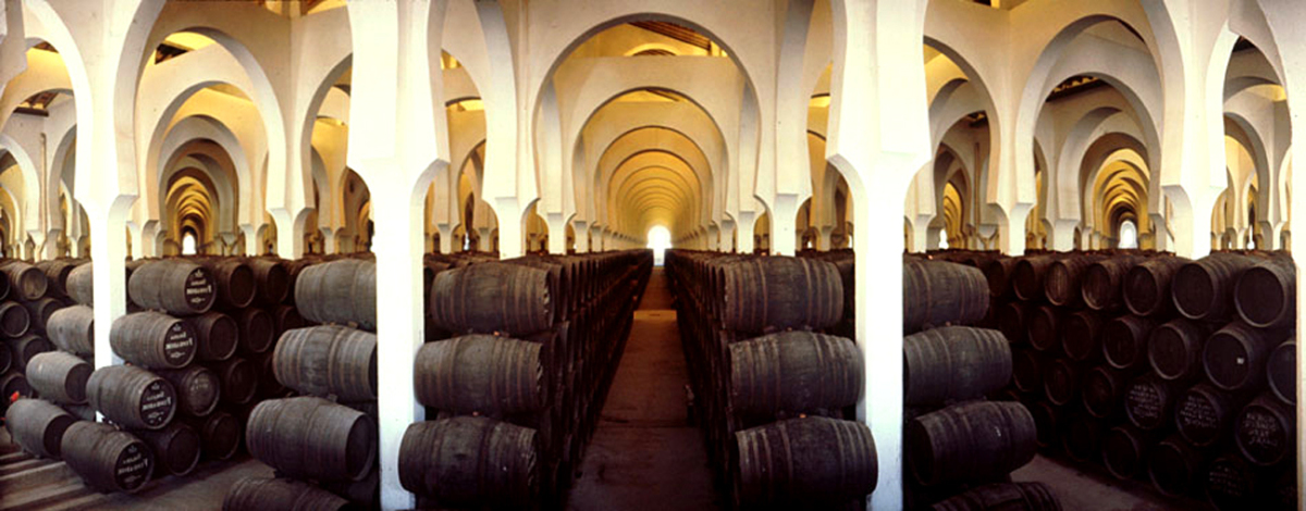 Explore Jerez's Abundant Vineyards
