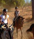 Horseriding in Seville