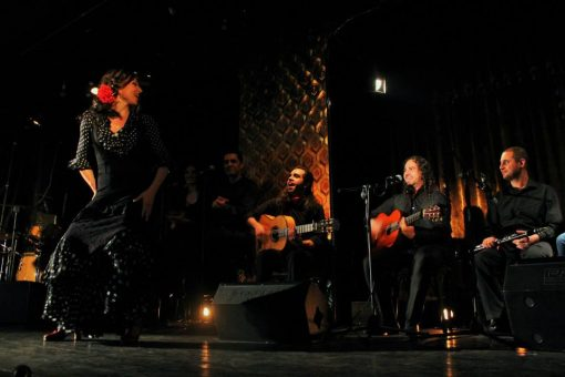 Flamenco Dance Show in Sevilla