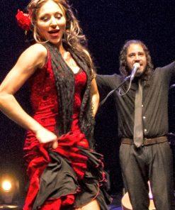 Flamenco Show in Sevilla