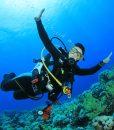 Diving Tour in Tarifa
