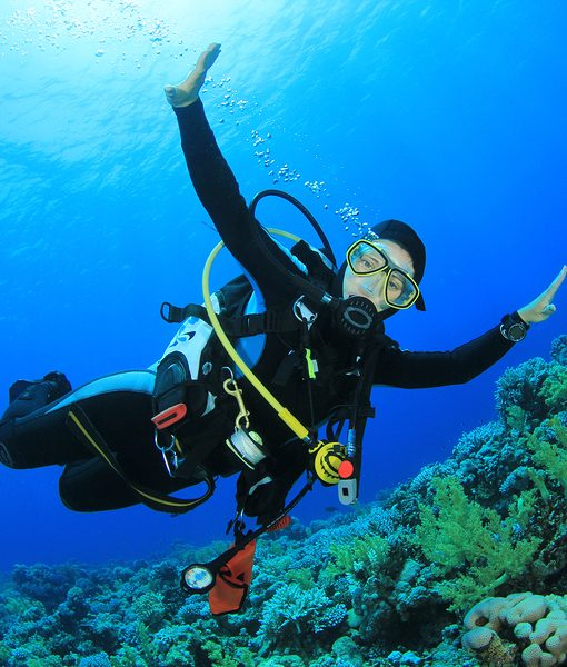 Diving Tour in Tarifa from Seville