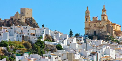 Transfer to Malaga and Ronda from Seville