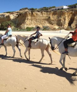 Guided daytrip to Donana National Park and El Rocio