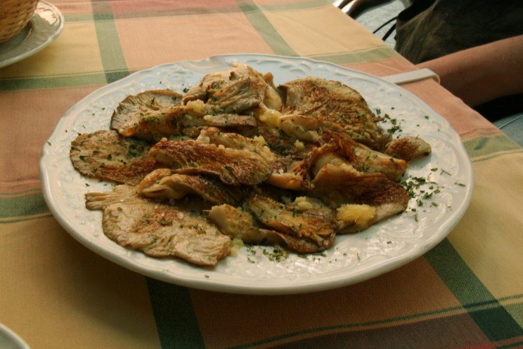 Setas De Cardo - Jaen - Traditional Dish
