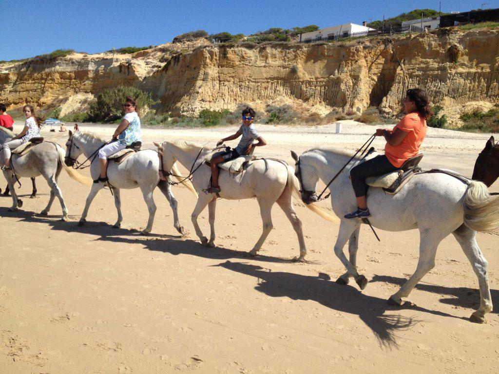 Horse riding in Doñana National park