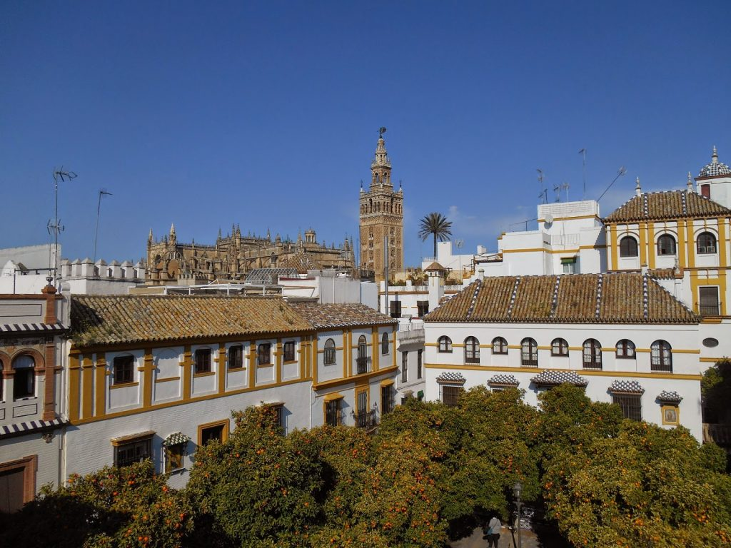 View from rooftop of Museo Pintor Amalio