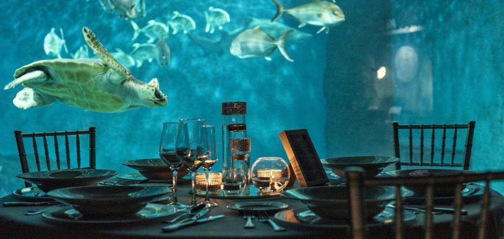 dine in luxury at the underwater restaurant