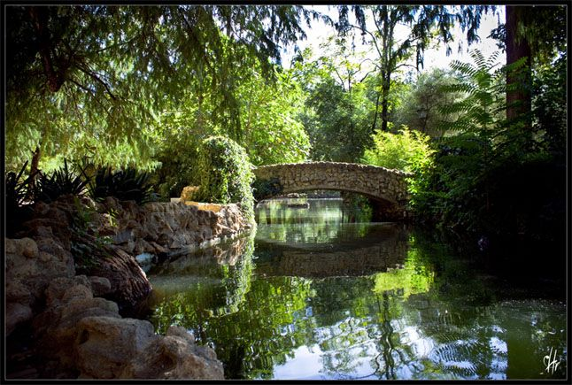 lover's retreat to maria luis park in Seville
