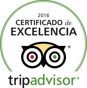 Not Just a Tourist - TripAdvisor Award 2016