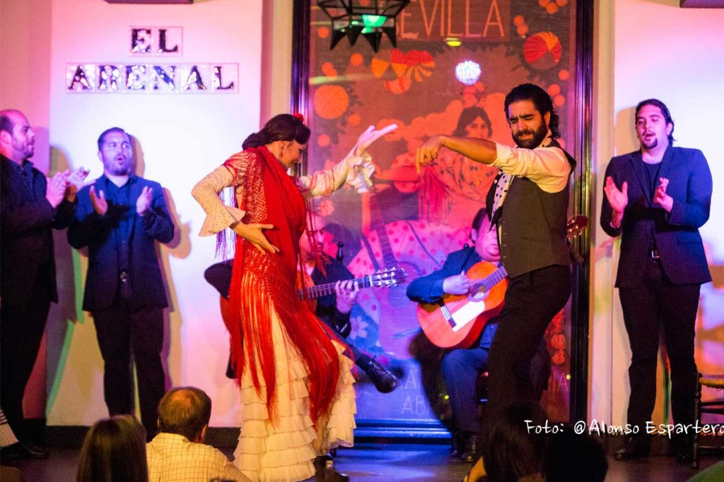 learn about flamenco culture on bespoke tour