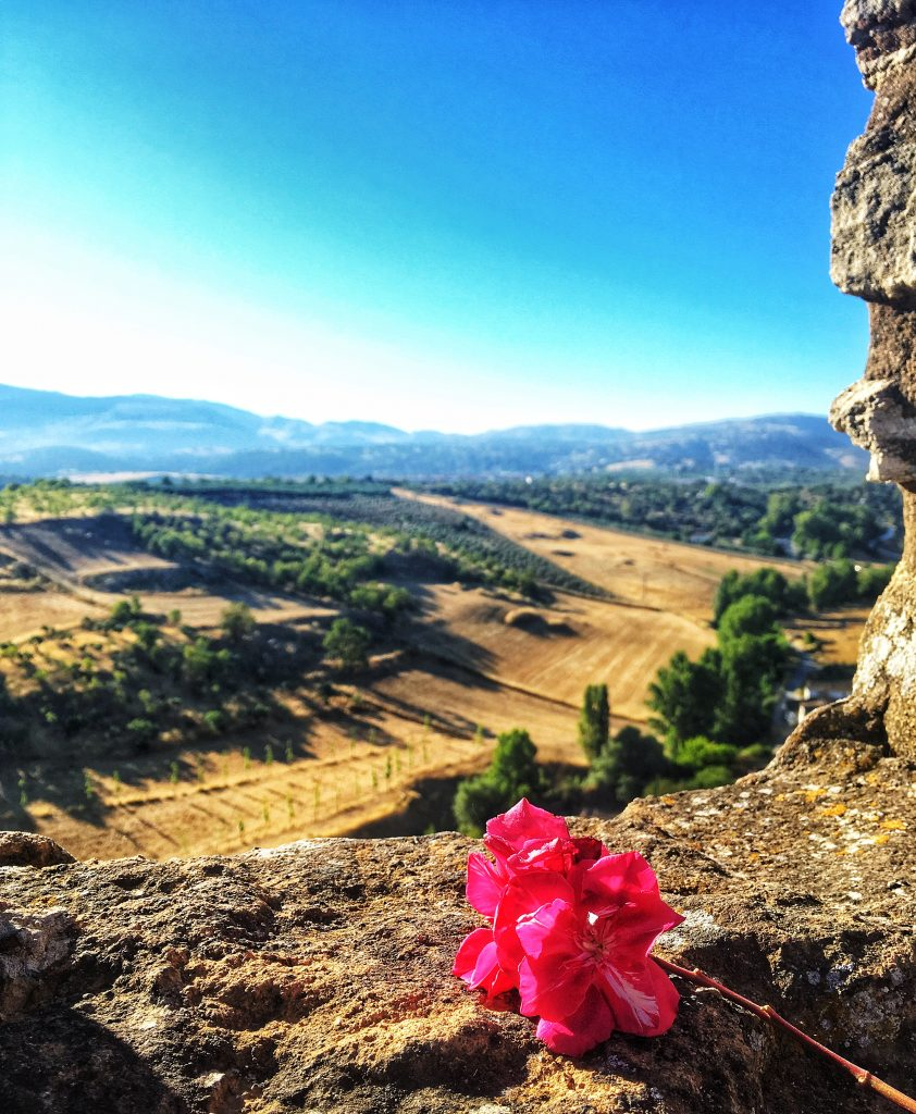 luxury tour of countryside of Spain
