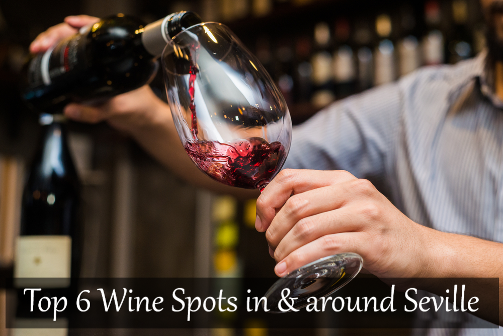 Top 6 Wine Bars & Tasting Experiences in and around Seville, best wine spots in seville
