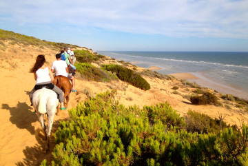 top things to do in Doñana National Park