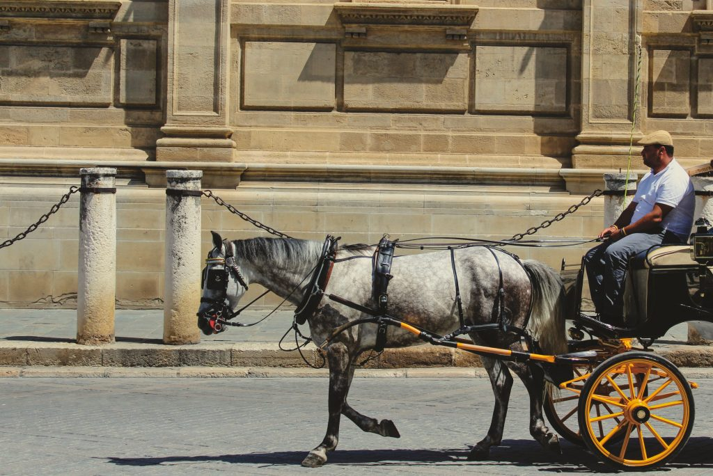 seville romantic getaway horse carriage ride