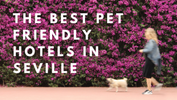 top pet friendly hotels seville