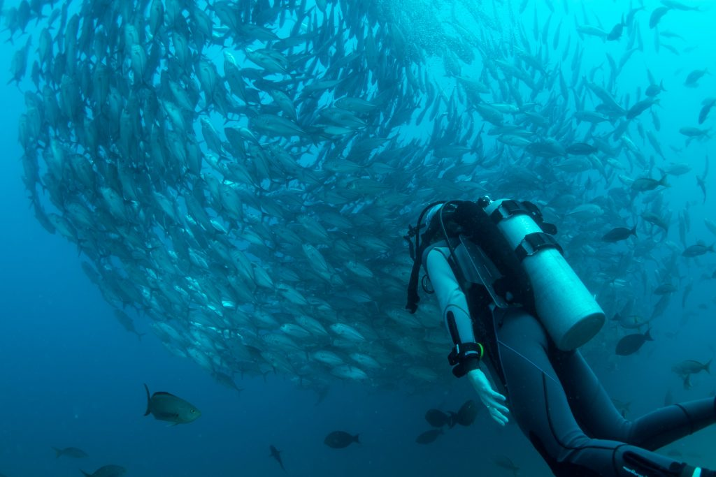 best diving and water sports seville