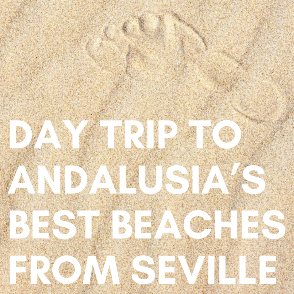 Visit the beach for a day from Seville
