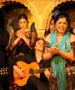 Find Gypsy flamenco in Granada walking tour