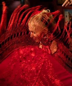 Feel flamenco at home in an online class