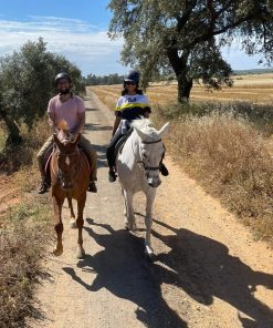 Horse riding family out door activity in Granada