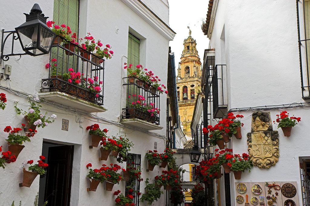 las mejores vistas en Córdob