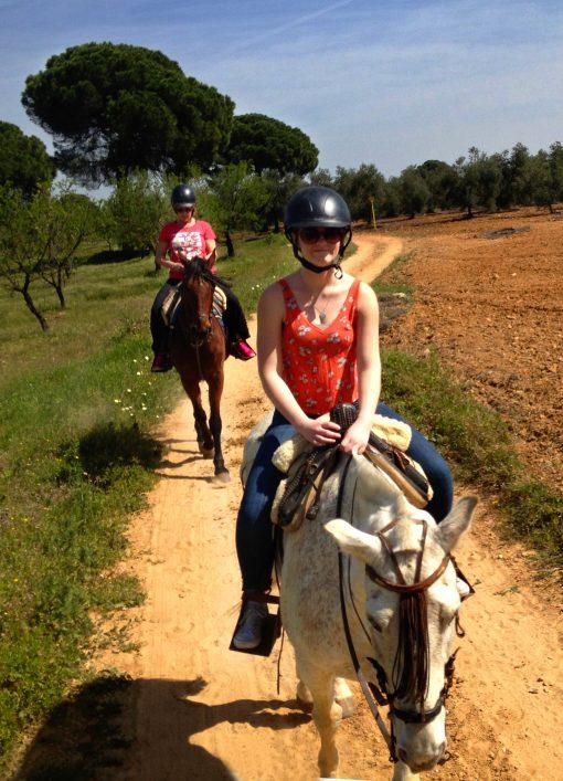 tour a caballo en Sevilla