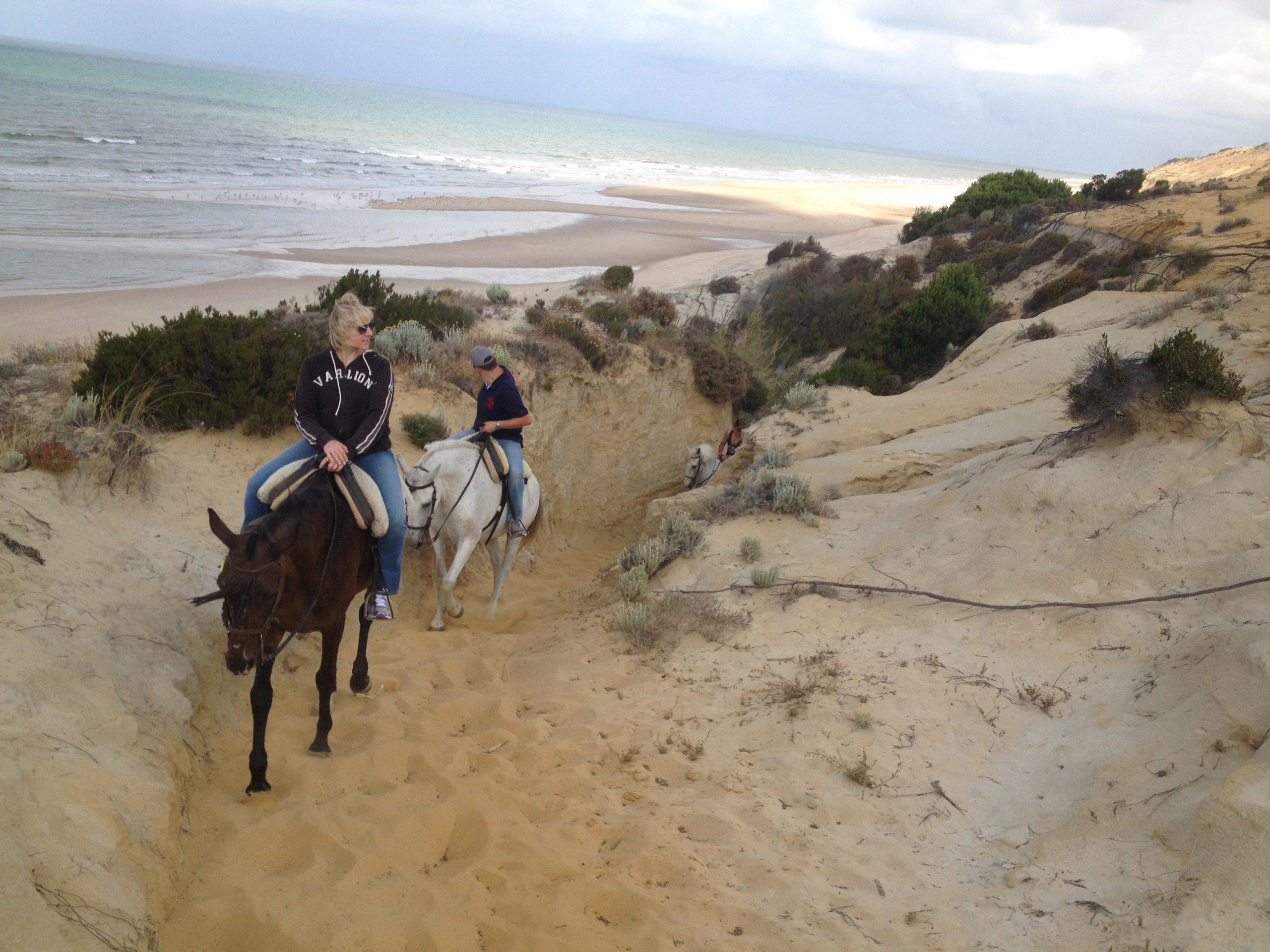 dónde montar a caballo en Doñana
