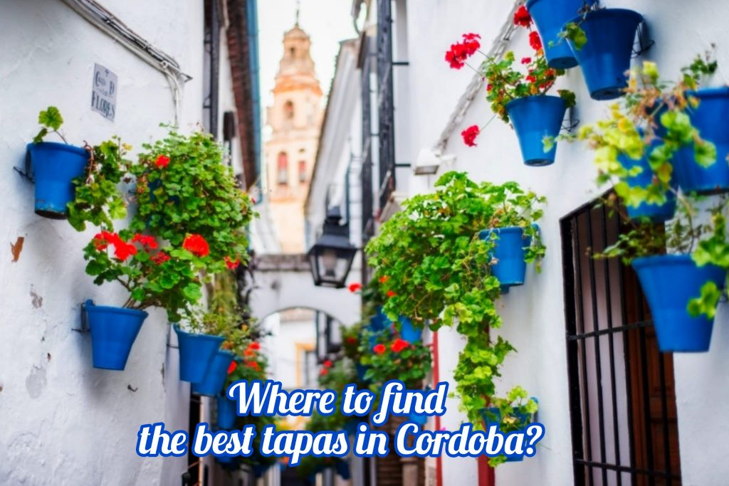 The best tapas taverns in Cordoba